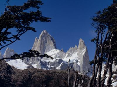 Santa Cruz Province, Cerro Fitzroy, in the Los Glaciares National Park, Framed by Trees, Argentina by Fergus Kennedy