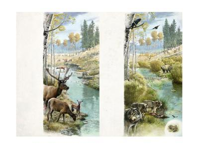 A before and after of Yellowstone's Habitat with and Without Wolves by Fernando G. Baptista