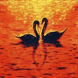 Swan LIV by Fernando Palma