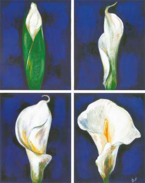 Blossoming Flower I by Ferrer
