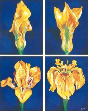 Blossoming Flower IV by Ferrer