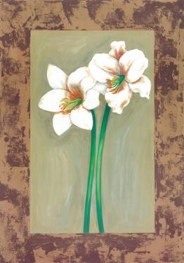 Flowers In Brown Frame IV by Ferrer