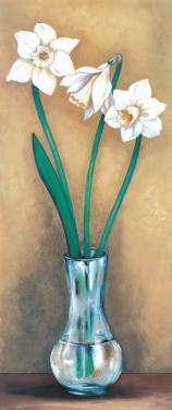 Narcissus II by Ferrer