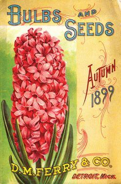 Ferry & Co. Seeds Detroit MI