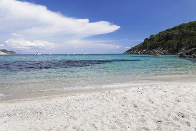 https://imgc.allpostersimages.com/img/posters/fetovaia-beach-island-of-elba-livorno-province-tuscany-italy_u-L-PWFSVG0.jpg?p=0