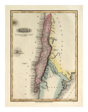 Chili, c.1823 by Fielding Lucas
