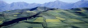 Fields, Farm, Qinghai Province, China