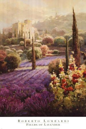 https://imgc.allpostersimages.com/img/posters/fields-of-lavender_u-L-F8U7QM0.jpg?p=0
