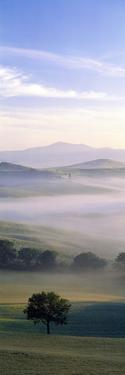 Fields Tuscany Italy
