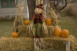 Figure and Pumpkins, Set Up to Commemorate Hallowe'en