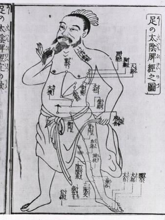 Figure with Acupuncture Points and Meridians from 1805 Japanese Medical Text