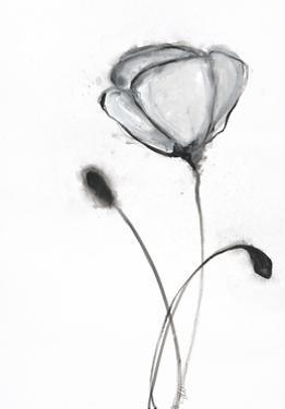 Snow Blossom 2 by Filippo Ioco