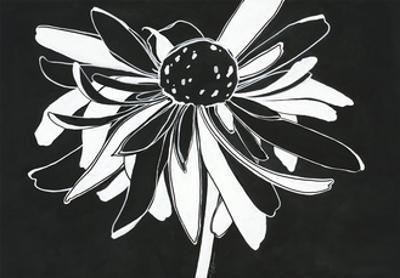 Zealous Bloom by Filippo Ioco