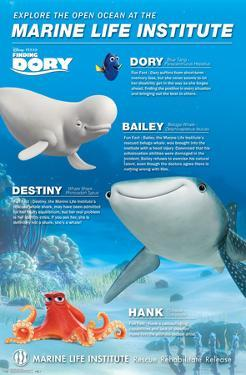 Finding Dory- Marine Life Group