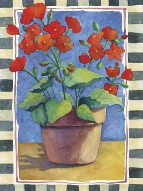 Geraniums by Fiona Stokes-Gilbert