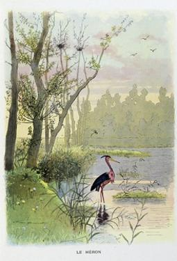 The Heron, La Fontaine's Fables by Firmin Bouisset