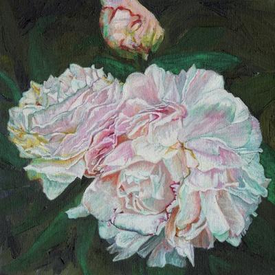 https://imgc.allpostersimages.com/img/posters/first-blooms-2012_u-L-Q1I8PK40.jpg?artPerspective=n