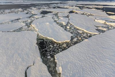 https://imgc.allpostersimages.com/img/posters/first-year-sea-ice-and-brash-ice-near-petermann-island_u-L-PNFYXD0.jpg?artPerspective=n