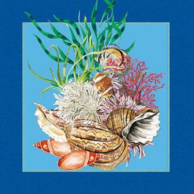 Fishes & Shells III