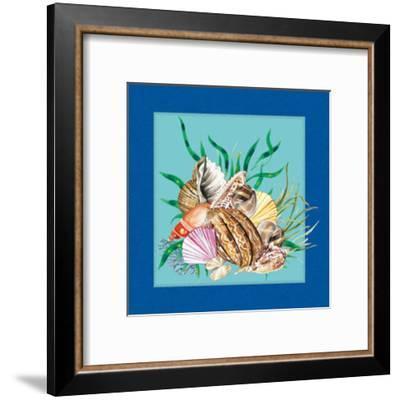 Fishes & Shells IV--Framed Art Print