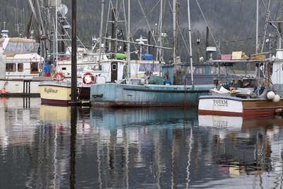 https://imgc.allpostersimages.com/img/posters/fishing-boats-moored-in-harbor-petersburg-alaska-usa_u-L-PN6LDK0.jpg?p=0