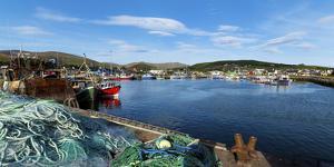 Fishing Harbor, Dingle Harbour, Dingle Peninsula, Dingle, County Kerry, Republic of Ireland