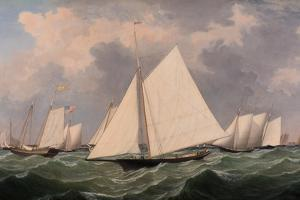 New York Yacht Club Regatta, 1856 by Fitz Henry Lane