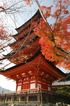 https://imgc.allpostersimages.com/img/posters/five-storey-pagoda-gojunoto-in-autumn-miyajima-island-western-honshu-japan_u-L-PWFJ2N0.jpg?p=0