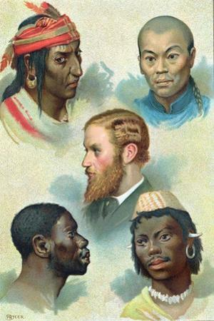 Five Types of the Human Race, Late 19th Century
