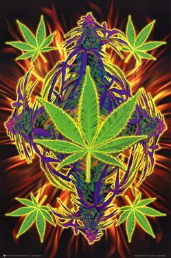 Flaming Leaf Pot Marijuana Art Print Poster