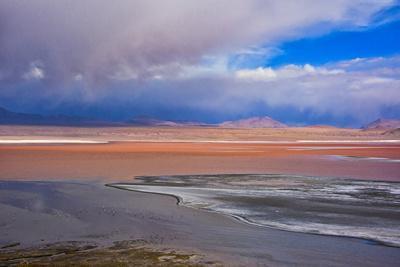 https://imgc.allpostersimages.com/img/posters/flamingos-on-laguna-colorada-eduardo-abaroa-andean-fauna-national-reserve-bolivia_u-L-Q1H20GC0.jpg?artPerspective=n