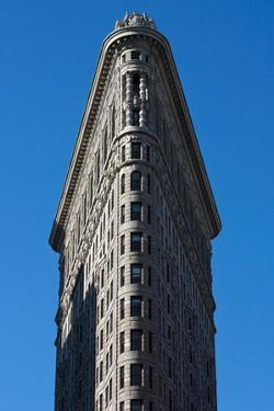 Flatiron Building New York City Photo Poster
