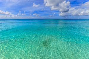 Crystal Clear Water of Barbados by Flavio Vallenari
