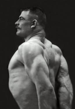 Flexing Triceps, Deltoids, and Trapezius