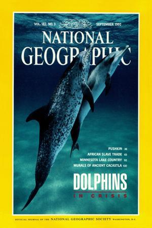 Cover of the September, 1992 National Geographic Magazine by Flip Nicklin