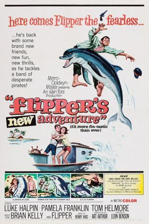 Flipper's New Adventure (aka Flipper and the Pirates)