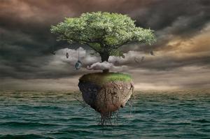 Floating Tree
