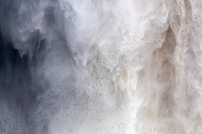 https://imgc.allpostersimages.com/img/posters/flock-of-swifts-flying-to-their-roost-behind-the-curtain-of-falling-water-of-kaieteur-falls-guyana_u-L-PWFROC0.jpg?p=0