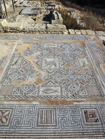 https://imgc.allpostersimages.com/img/posters/floor-mosaic-in-roman-villa-paphos-cyprus-3rd-century_u-L-POPQQM0.jpg?p=0