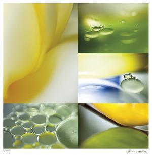 Citrus Drops by Florence Delva