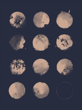 12 Moons by Florent Bodart
