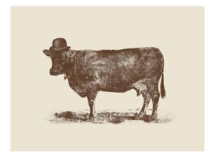 Cow Cow Nut by Florent Bodart