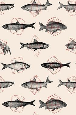 Fishes in Geometrics by Florent Bodart