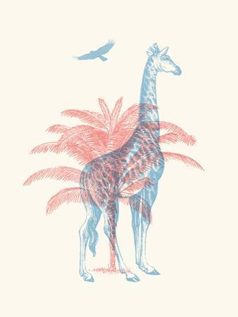 Giraffe by Florent Bodart