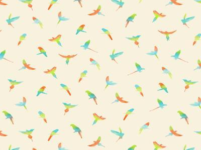 Papagei by Florent Bodart