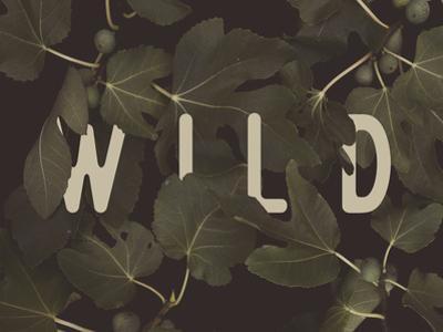 Wild Main by Florent Bodart