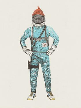 Zissou In Space by Florent Bodart