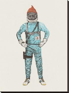 Zissou In Space by Florent Bodart
