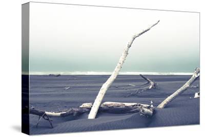 Beach Bones