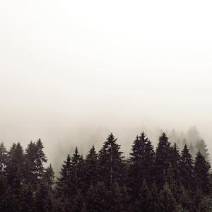 Misty Peaks by Florian Schleinig